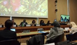 Cedaw Session, Geneva